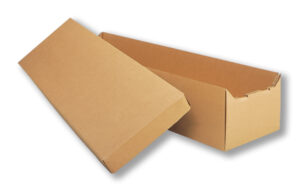 Cardboard Cremation Container
