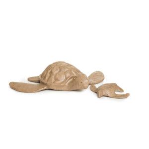 turtle-and-mini